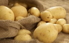Рецепты с картофелем