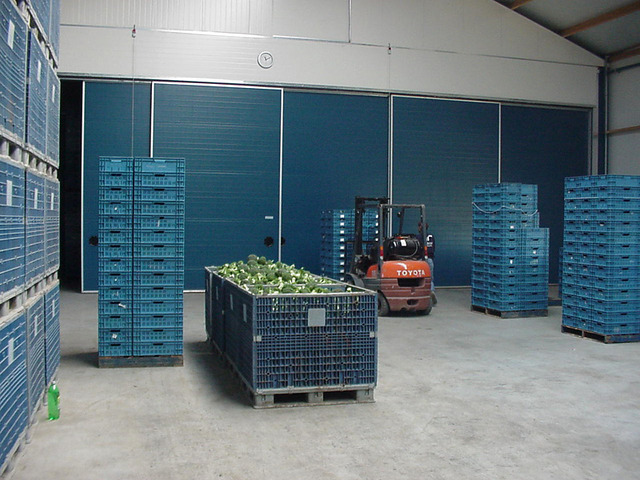 Оптовая плодово овощная база в Москве