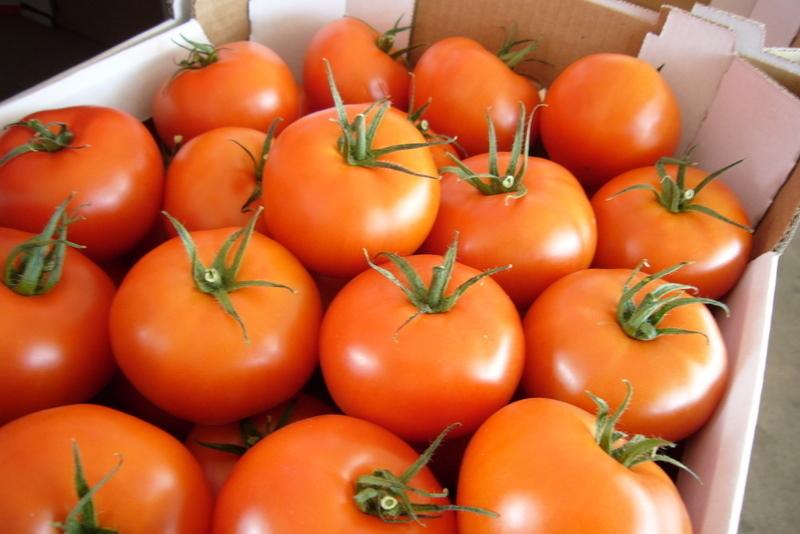 Овощи оптом по доступным ценам
