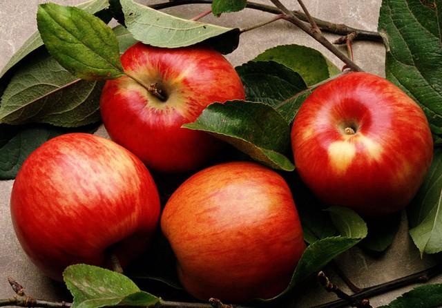 Яблоко зимой оптом