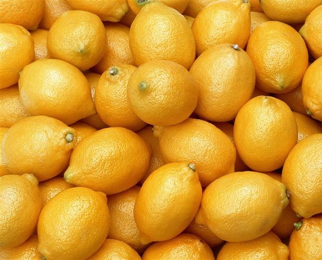 Лимоны оптом