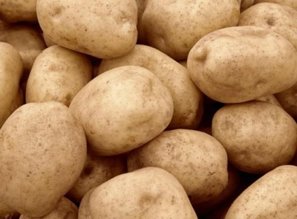 Картофель вес. оптом