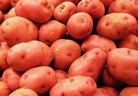 Картофель красный вес.