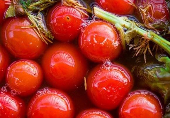 Помидоры красные соленые оптом