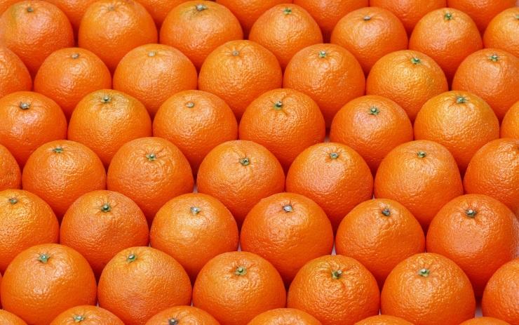 Апельсины (ЮАР) оптом