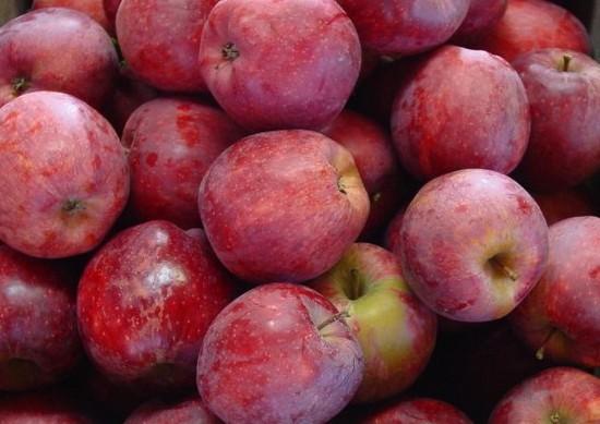 Яблоки Ред Делишес оптом