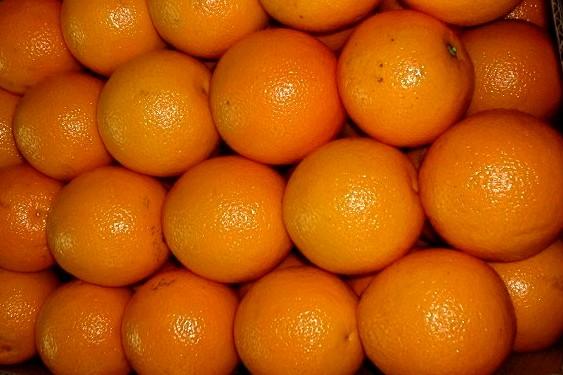Грейпфрут (ЮАР) оптом
