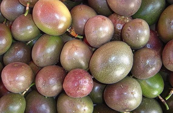 Маракуйя (Эквадор) оптом