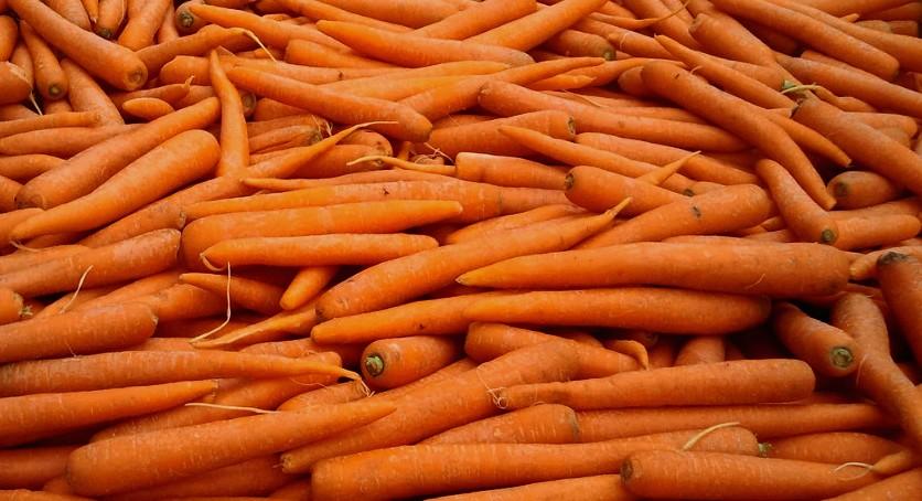 Морковь (Россия) оптом