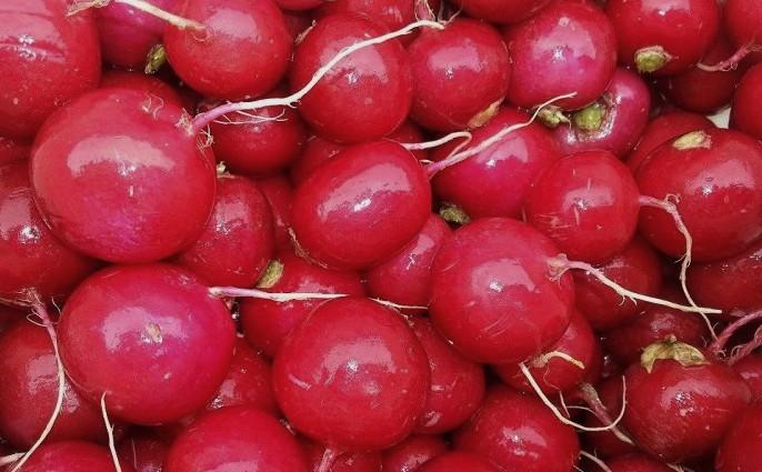 Редис красный фасованный оптом