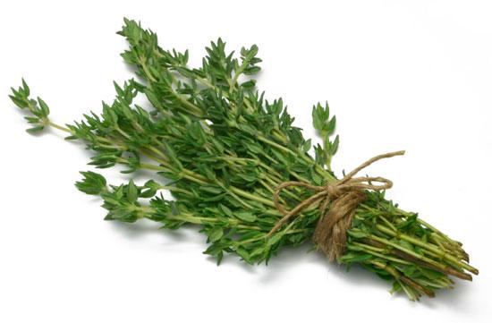 Тимьян зелень (Израиль) оптом