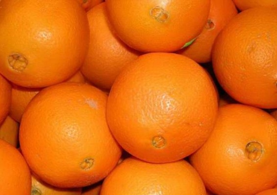Апельсины (Турция) оптом