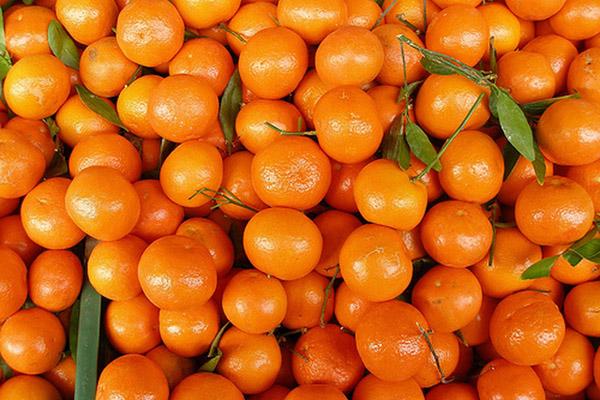 Апельсины (Израиль) оптом