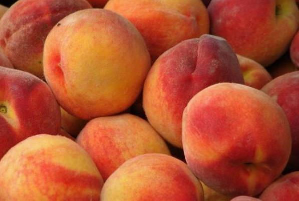Персики (ЮАР) оптом