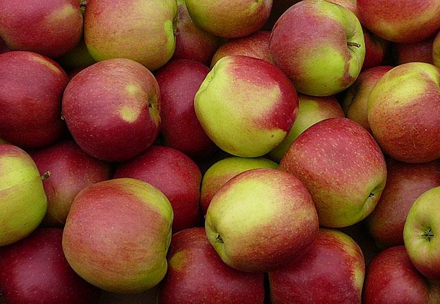 Яблоки Легол (Сербия) оптом