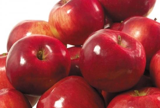 Яблоки Малинка (Сербия) оптом