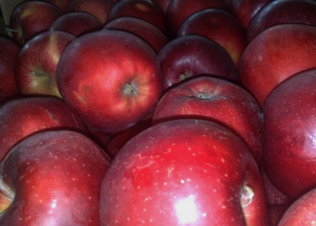 Яблоки Черный принц (Аргентина) оптом