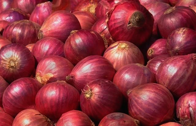 Лук-репка красный оптом (Израиль)