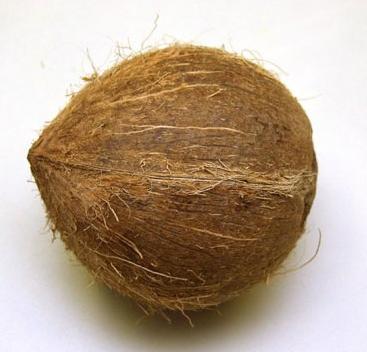 Кокос поштучно (Чили) оптом