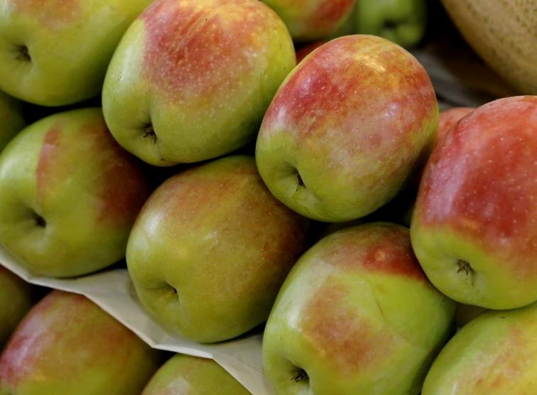 Яблоки Синап (Россия) оптом